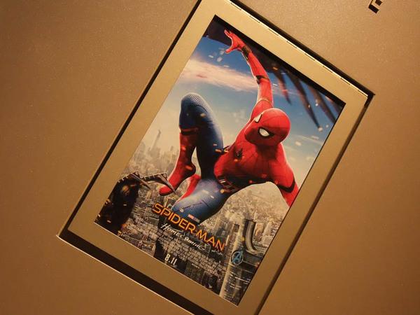 spidermanHC_0901.jpg